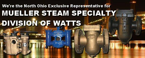 Mueller Steam Specialty Exclusive Representative